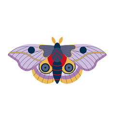 colorful tropical butterfly moth icon in cartoon vector image