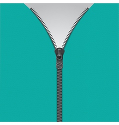 Realistic zipper template vector image