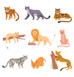 Set wild cats on a white vector