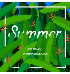 Summer season concept tropical paradise with palm vector