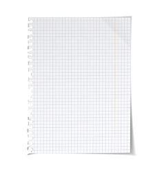 Paper on white vector image vector image