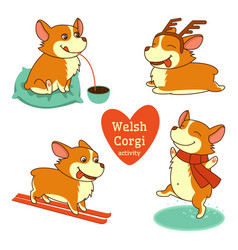 Set of welsh corgi character in vector