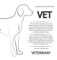 veterinary poster design with line dog vector image vector image