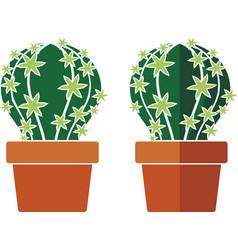 Cactus in a pot vector