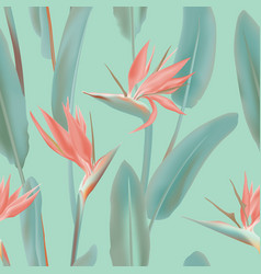 pink south african tropical flower seamless vector image