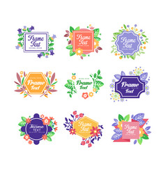 set beautiful floral frames with place vector image