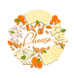 set cheeses vector image