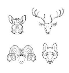 Set of animals sketches deer vector image