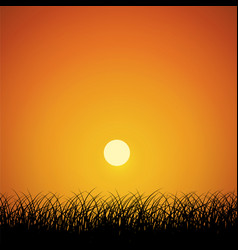 silhouette grass lawn with sunrise sky background vector image