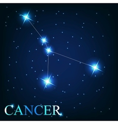 The cancer zodiac sign of the beautiful bright vector