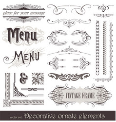 vintage filigree elements vector image
