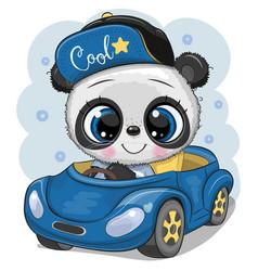 Cartoon panda boy in a cap goes on a blue car vector