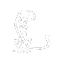 Cheetah sits drawing lines vector
