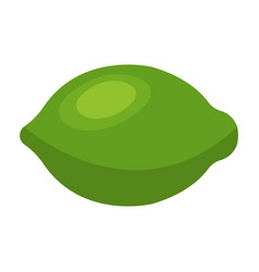 lime icon food with healthy fats and oils cartoon vector image