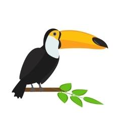 Toucan bird vector image