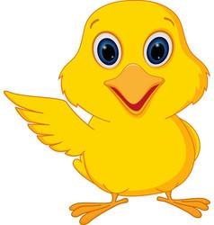 happy chick cartoon vector image vector image