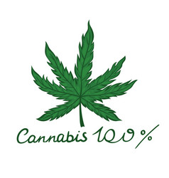 Emblem 100 cannabis isolated on a white vector
