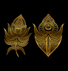 Golden abstract feathers isolated on black vector
