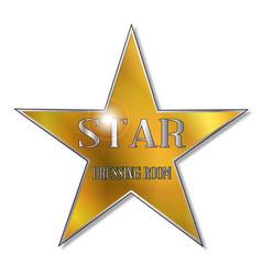 Star dressing room vector