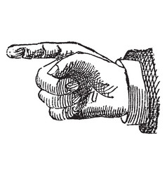 Hand and fingers vintage engraving vector
