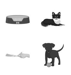 Lounger for a pet clipping of claws in a vet vector