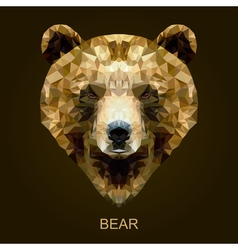 Modern brown bear in polygonal style vector image