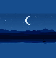 night landscape with stars in the sky vector image
