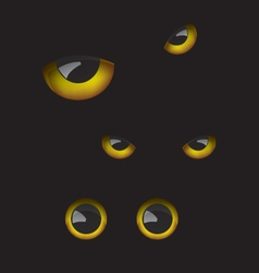 Owl eyes in the dark vector