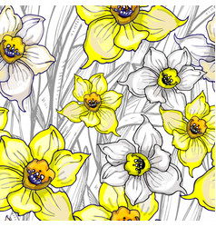 spring seamless pattern with flowers of narcissus vector image