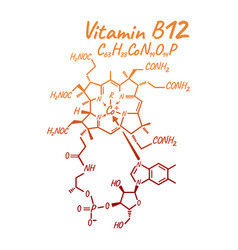 vitamin b12 label and icon chemical formula and vector image