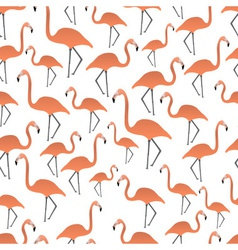 flamingos seamless pattern eps10 vector image