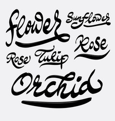 Flower and orchid hand written typography vector