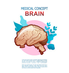 Internal organs medical poster concept vector