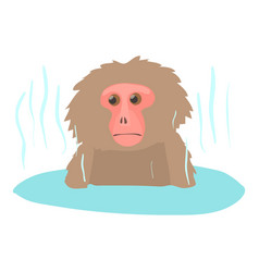 Monkey bathe icon cartoon style vector