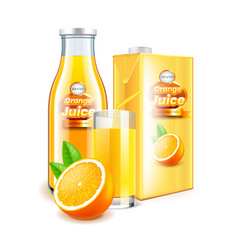 orange juice in glass bottle and packaging 3d vector image