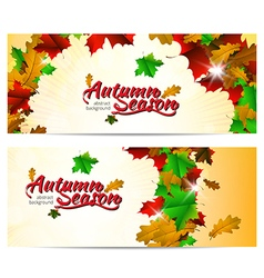 Autumn season abstract background vector image