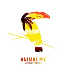 toucan and palm trees vector image vector image
