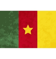 True proportions Cameroon flag with texture vector image