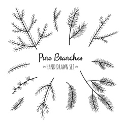 Hand drawn pine branches set vector image vector image
