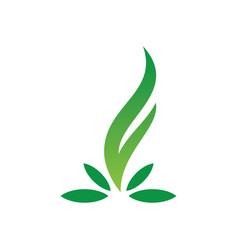leaf ornament logo vector image vector image