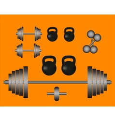 weights barbell dumbbell vector image