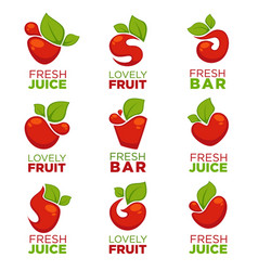 apple cherry fruit and fresh juice collection vector image vector image