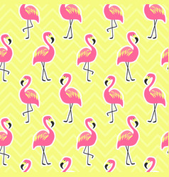 Beautiful seamless pattern with flamingo vector