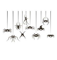 black spiders set vector image