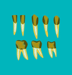 flat shading style icon tooth vector image