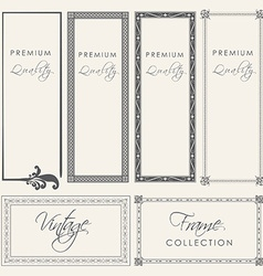 Premium quality vintage filigree frame collection vector
