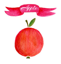 red apple logo design template food or fruit icon vector image vector image