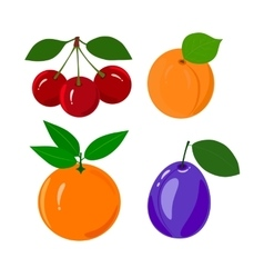 Set of juicy ripe fruit isolated on a white vector