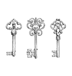 Sketches of vintage keys with forged elements vector image vector image