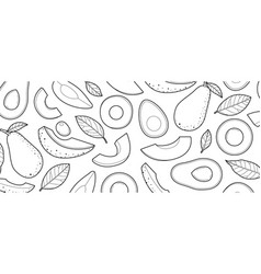 avocado sketch drawn on a white background vector image